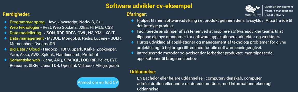 software udvikler cv