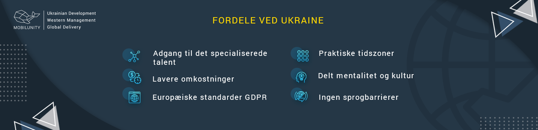 professionelt IT-konsulenthus fordele ved ukraine